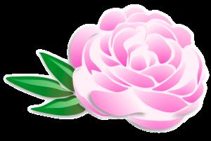 logo kelluvaparempi